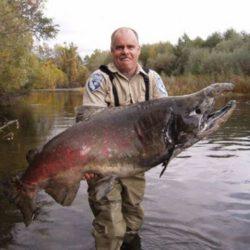 Kapitaler King von der Lake Creek Mündung